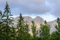 View of Giewont peak, Tatra mountains, Poland. Royalty Free Stock Photography