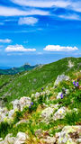 View on Giewont at Polish West Tatras in Summer Stock Images