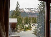 A view at Girdwood Alaska