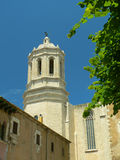 View of Girona cathedral. And green tree royalty free stock photos