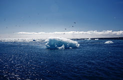View of the glacier lagoon, Jokulsarlon, Iceland Royalty Free Stock Photography