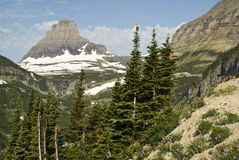 View of Glacier National Park. View of  Clements Mountain from Going to the Sun Road Stock Images