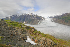 View of a Glacier from an Outcrop Royalty Free Stock Photography