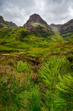 View of Glen Coe mountains with greenery foreground, Scotland Stock Photography