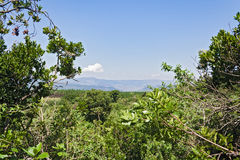 View from God`s Window along the Blyde River Canyon, South Africa Royalty Free Stock Photo