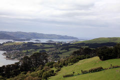 The view going up to Larnach Castle in Dunedin New Zeal Royalty Free Stock Images
