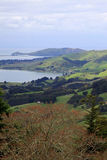 The view going up to Larnach Castle in Dunedin New Zeal Royalty Free Stock Photography