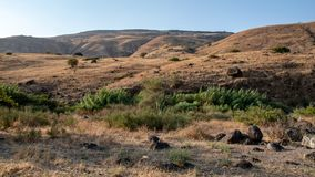 View on the Golan Heights royalty free stock image