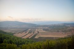 View of the Golan Heights in the summer . Stock Photo