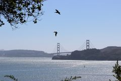 View of the Golden Gate Bridge Stock Photography