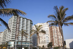 View of Golden Mile Beachfront Hotels, Durban South Africa Stock Image