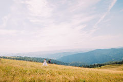 View of golden summer field with two romantic young people walking on. Majestic forest hills under astonishing sunny sky at backgr Stock Photography