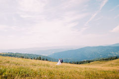 View of golden summer field with two romantic young people walking on. Majestic forest hills under breathtaking sunny sky at backg Stock Photos