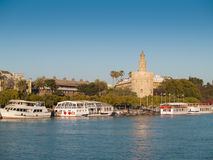 View of Golden Tower (Torre del Oro) of Seville royalty free stock images