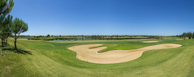 View golf course in the summer. Royalty Free Stock Images