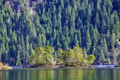 View of Gordon Bay in Cowichan Lake during the fall, BC, Canada royalty free stock photography