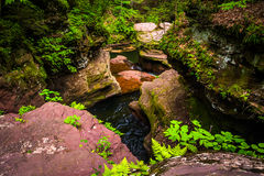 View of a gorge from above Adam's Falls at Ricketts Glen State P Royalty Free Stock Images