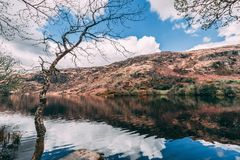 View of the Gouganebarra Lake and the river Lee outside of Saint Finbarr`s Oratory chapel in county Cork. Ireland royalty free stock photography