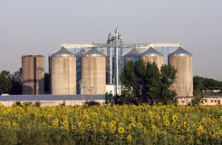 View of grain silos Royalty Free Stock Photos