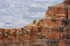 View of the Grand Canyon Royalty Free Stock Image