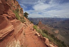 View of Grand Canyon from a hiking trail Stock Images