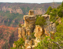 A view of the grand canyon from the north rim Royalty Free Stock Photography