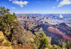 View of Grand Canyon from rim trail Royalty Free Stock Images