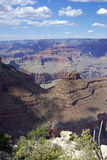 A View of the Grand Canyon Royalty Free Stock Photos