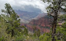 View on Grand Canyon under heavy fog. USA royalty free stock photography