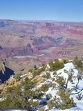View on the Grand Canyon. With snow in the foreground stock photo