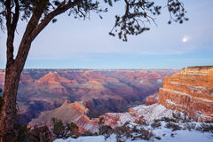 View of Grand Canyon in Winter Stock Photos