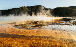 View of the Grand Prismatic Spring  at Yellowstone national park,WY,USA. Grand Prismatic Spring at Yellowstone national park,white steam,reflection,mountains Royalty Free Stock Photo