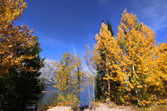 Fall in Grand Tetons Royalty Free Stock Photography