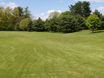 View of grass lawn and trees in a park setting Stock Images