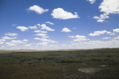 View of great kazakh steppe Stock Images