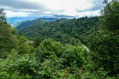 View from Great Smoky Mountains Stock Photos