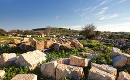 View on green biblical landscape and Archaeological Ruins Beit Guvrin Maresha during winter time, Israel royalty free stock image