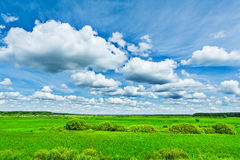 View on green field and beauty cloudy sky Stock Image