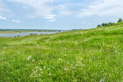 View on green field and the river Royalty Free Stock Photos