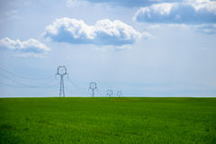 View of a green field of young grain with a power pole under a blue sky Royalty Free Stock Images
