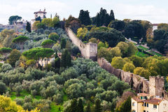 View of green gardens and wall of Giardino Bardini Stock Images