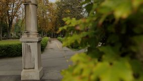 View on green ivy leaves and beautiful empty Mirogoj cemetery park, nature. Stock footage stock footage