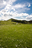 View on green meadow on jaizkibel hill in basque country, spain. Enjoying in spring green meadow and hill peak on jaizkibel hill in basque country, spain Royalty Free Stock Images