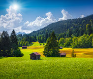 View of green meadows near the Kaltenbrunn village in Bavaria Royalty Free Stock Image