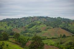 Beautiful view of green mountain range. View of green mountain range Stock Photo