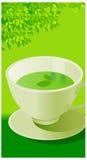 The view of Green Tea Stock Photos