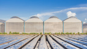 View for greenhouse with blue sky Royalty Free Stock Photography