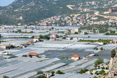 View of the greenhouses in Demre town Stock Photography