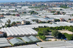 View of the greenhouses in Demre town. Aerial view of greenhouses in Demre town, Antalya district, Turkey Stock Photo