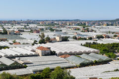 View of the greenhouses in Demre town Royalty Free Stock Photography